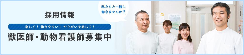 獣医師・動物看護師募集中